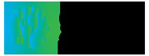 Logo Glaslookspecialist